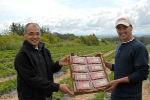 Guy-et-Daniel-avec-boite-de-fraise